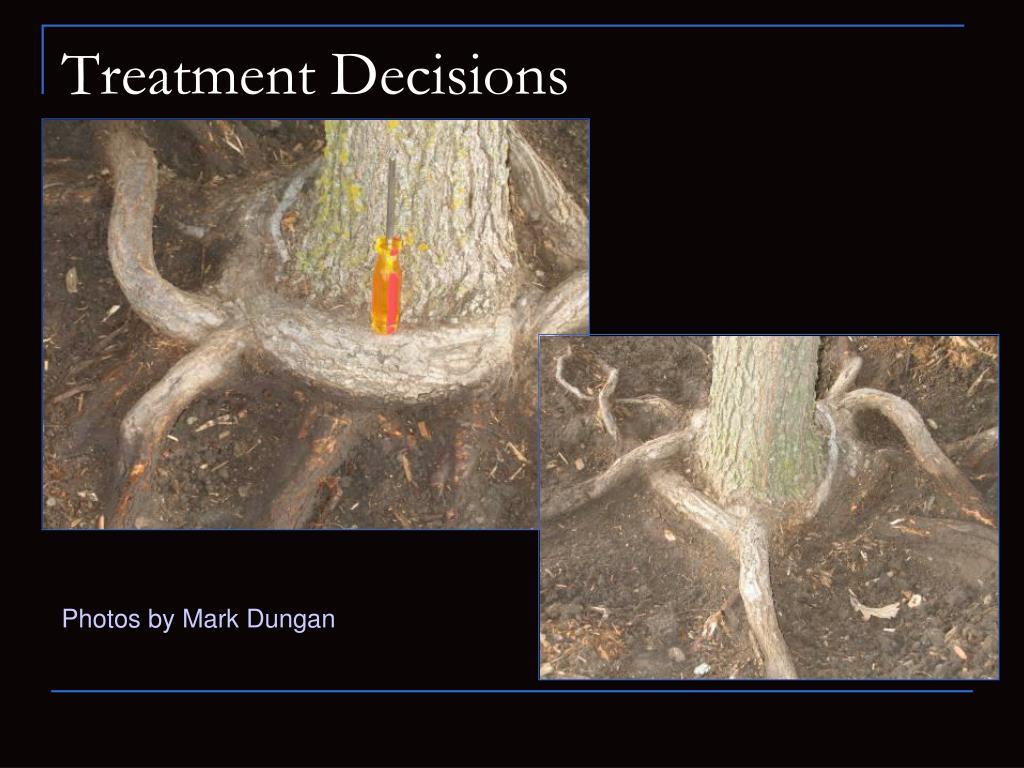 Treatment Decisions