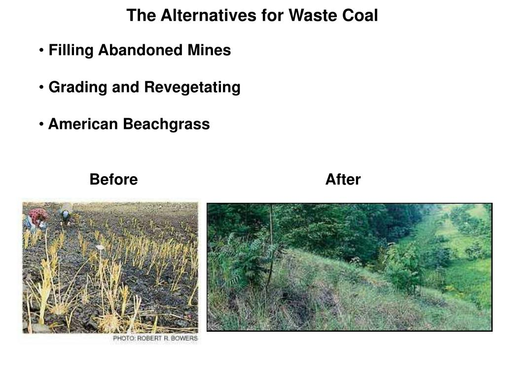 The Alternatives for Waste Coal