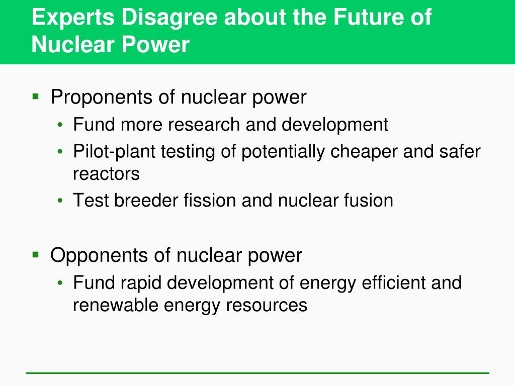 Experts Disagree about the Future of Nuclear Power