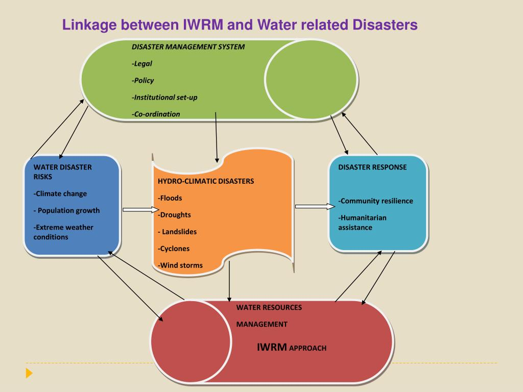 DISASTER MANAGEMENT SYSTEM
