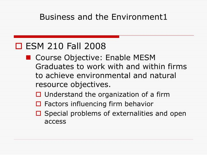 Business and the environment1