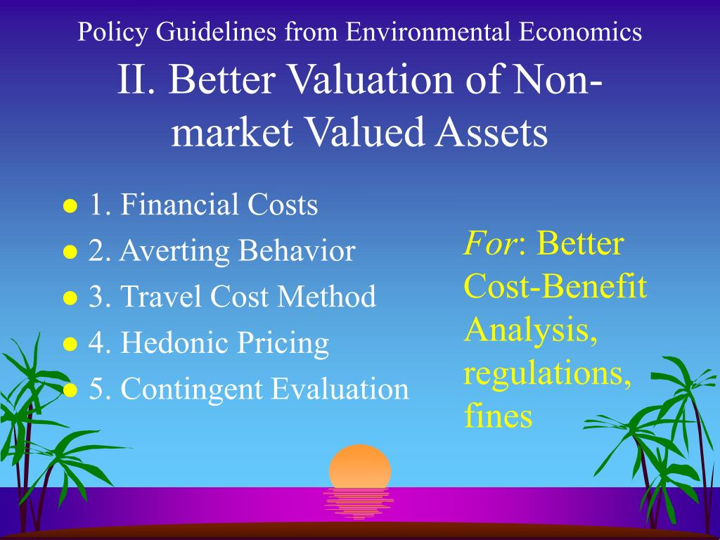 Policy Guidelines from Environmental Economics