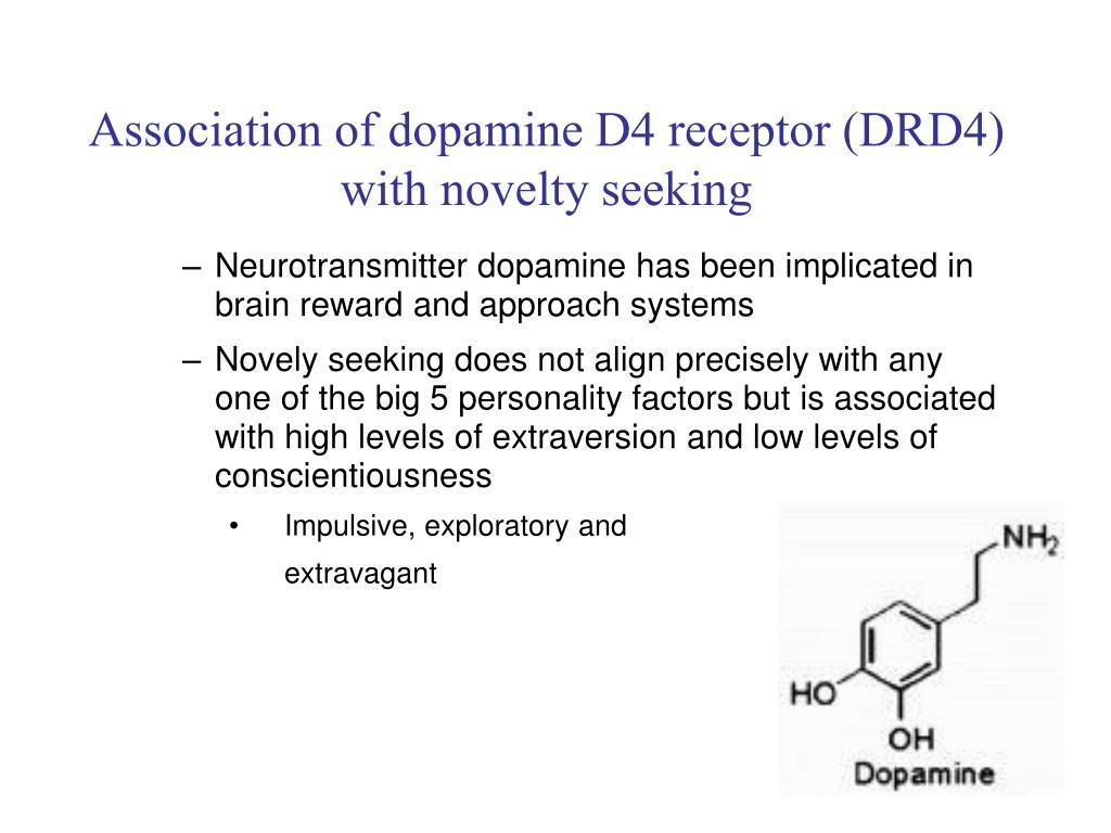 Association of dopamine D4 receptor (DRD4) with novelty seeking