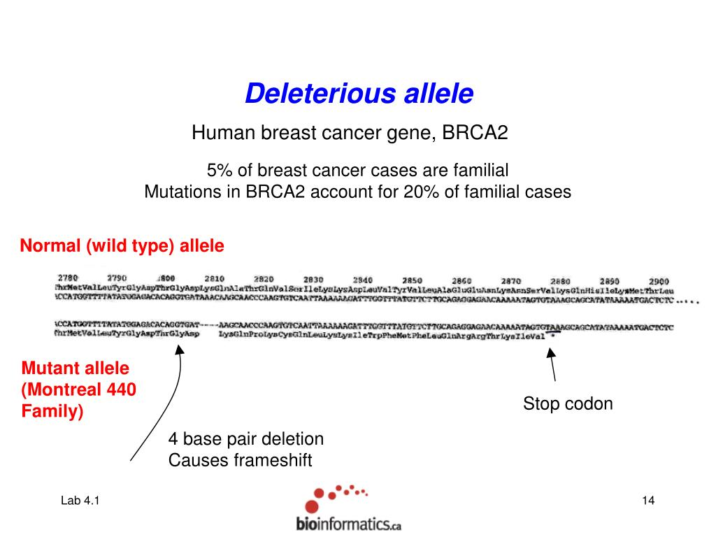 Deleterious allele