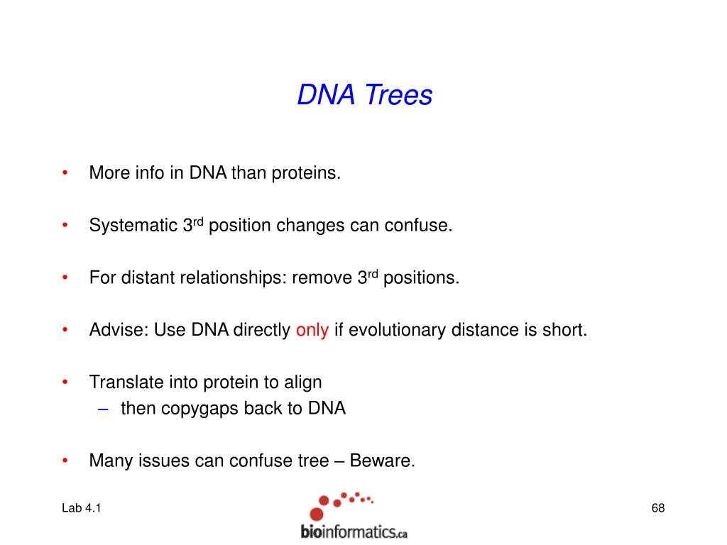 DNA Trees