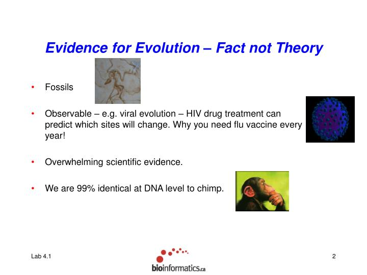 Evidence for evolution fact not theory