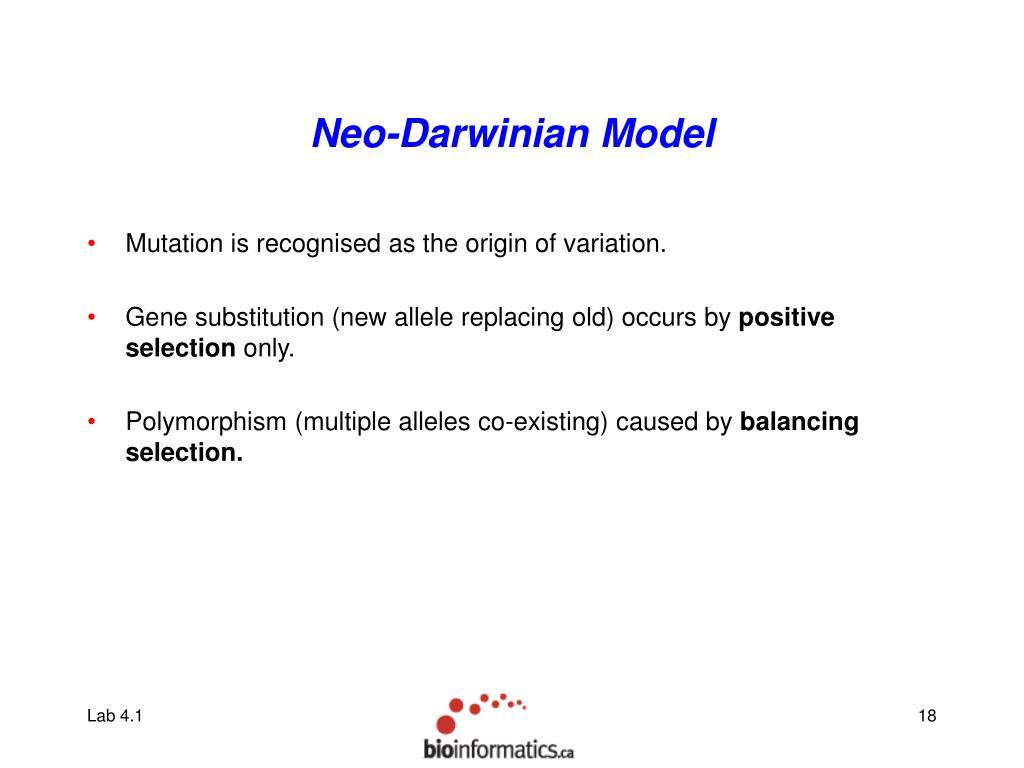 Neo-Darwinian Model