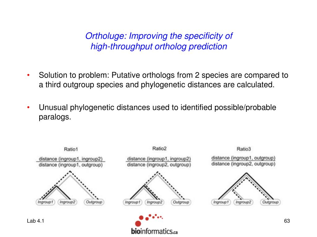 Ortholuge: Improving the specificity of