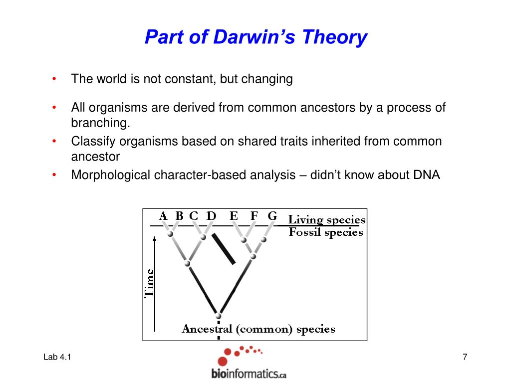 Part of Darwin's Theory