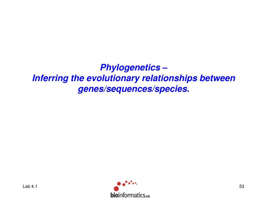 Phylogenetics –
