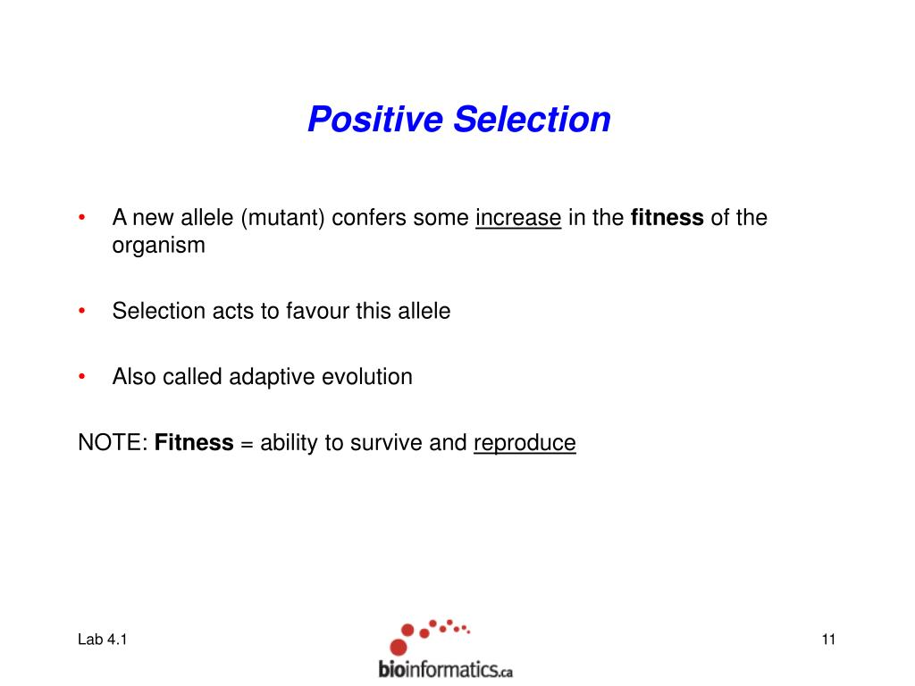 Positive Selection