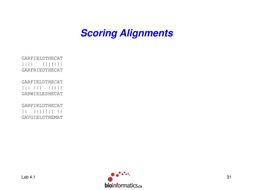 Scoring Alignments