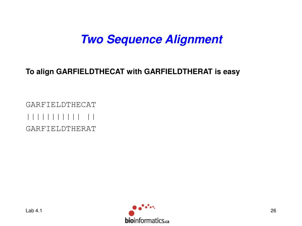 Two Sequence Alignment