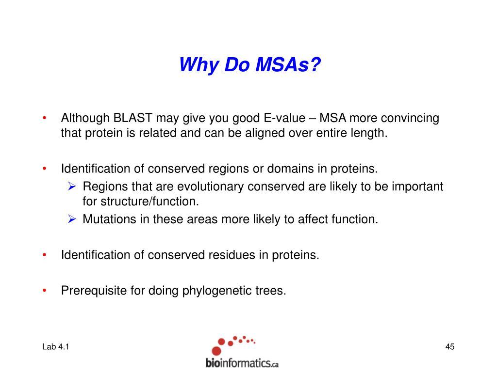 Why Do MSAs?