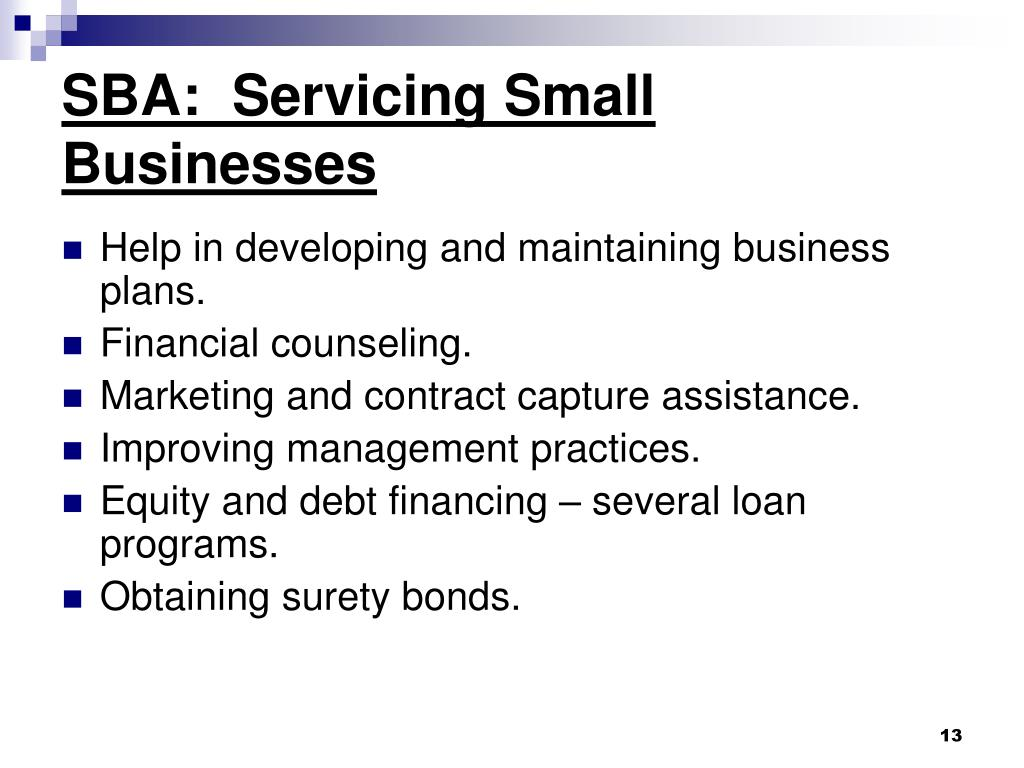 SBA:  Servicing Small Businesses