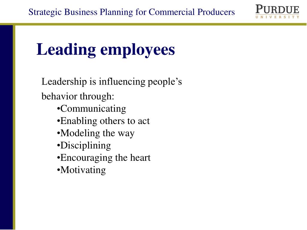 Leading employees
