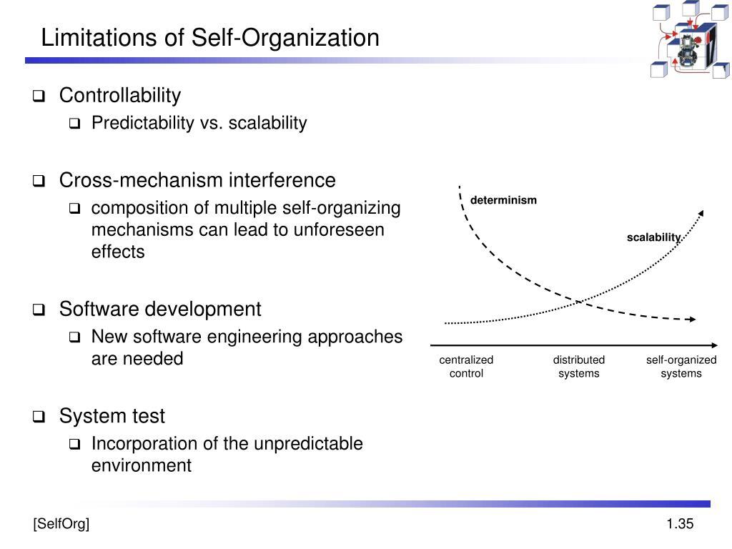 Limitations of Self-Organization