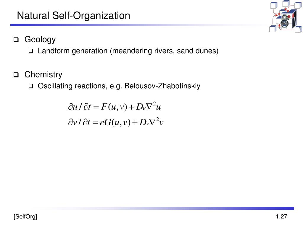 Natural Self-Organization
