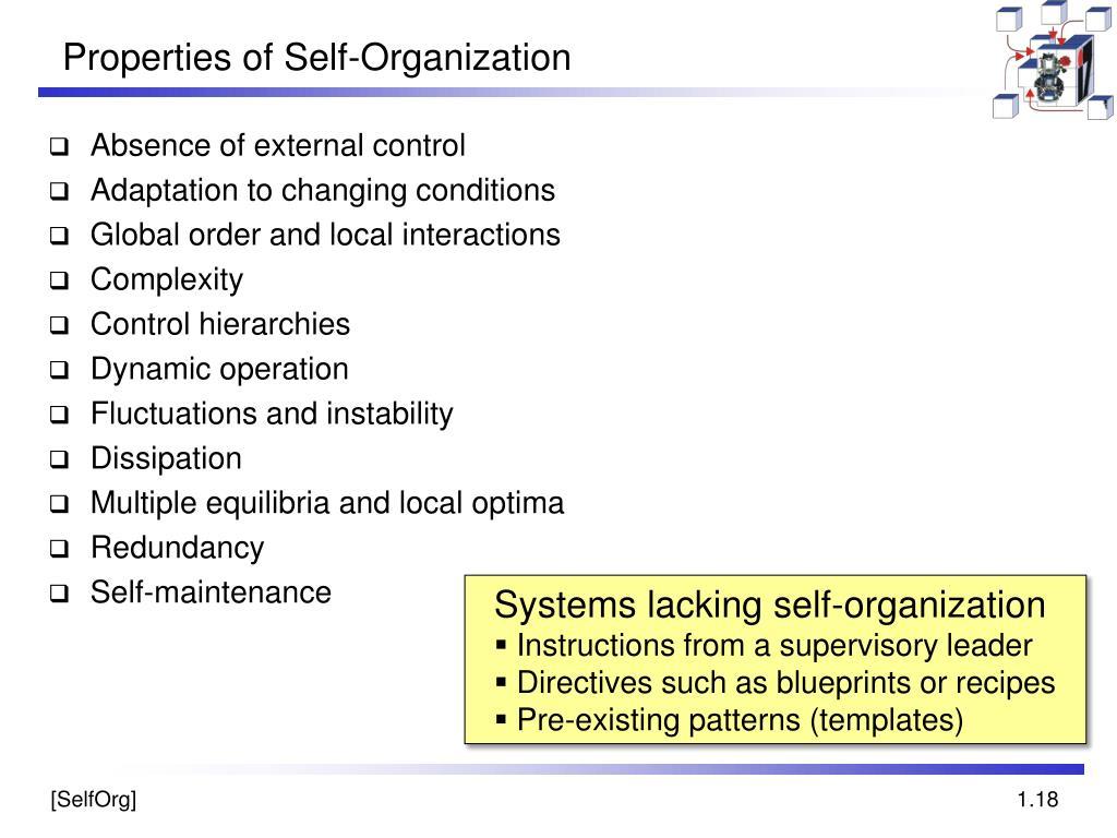Properties of Self-Organization