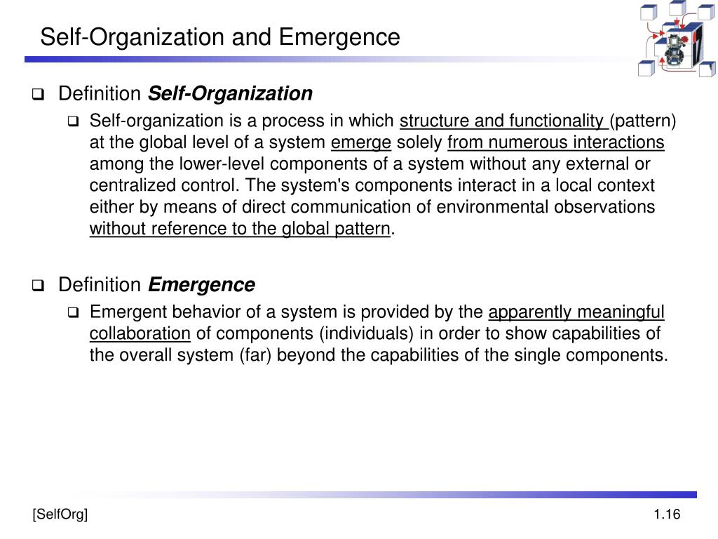Self-Organization and Emergence