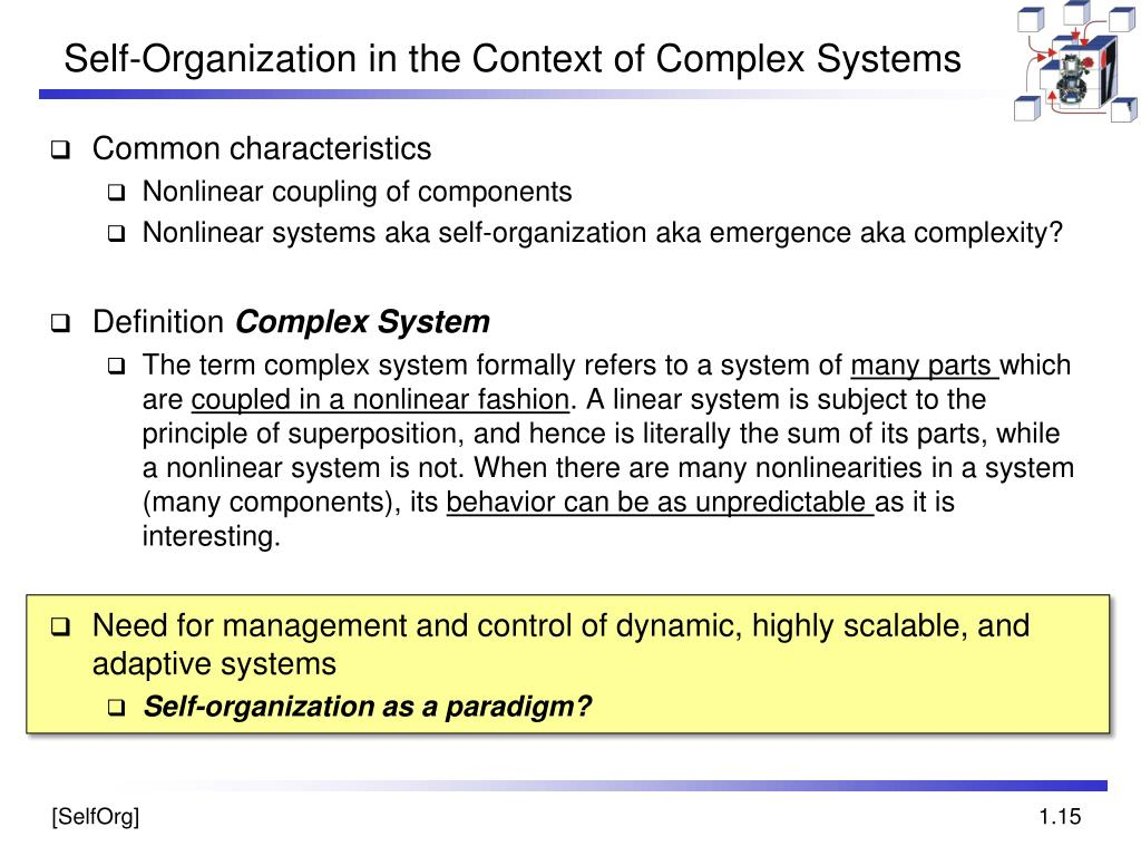 Self-Organization in the Context of Complex Systems