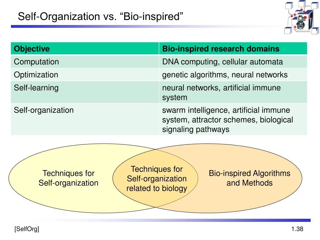 "Self-Organization vs. ""Bio-inspired"""