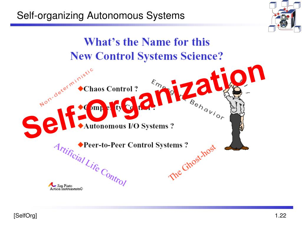 Self-organizing Autonomous Systems