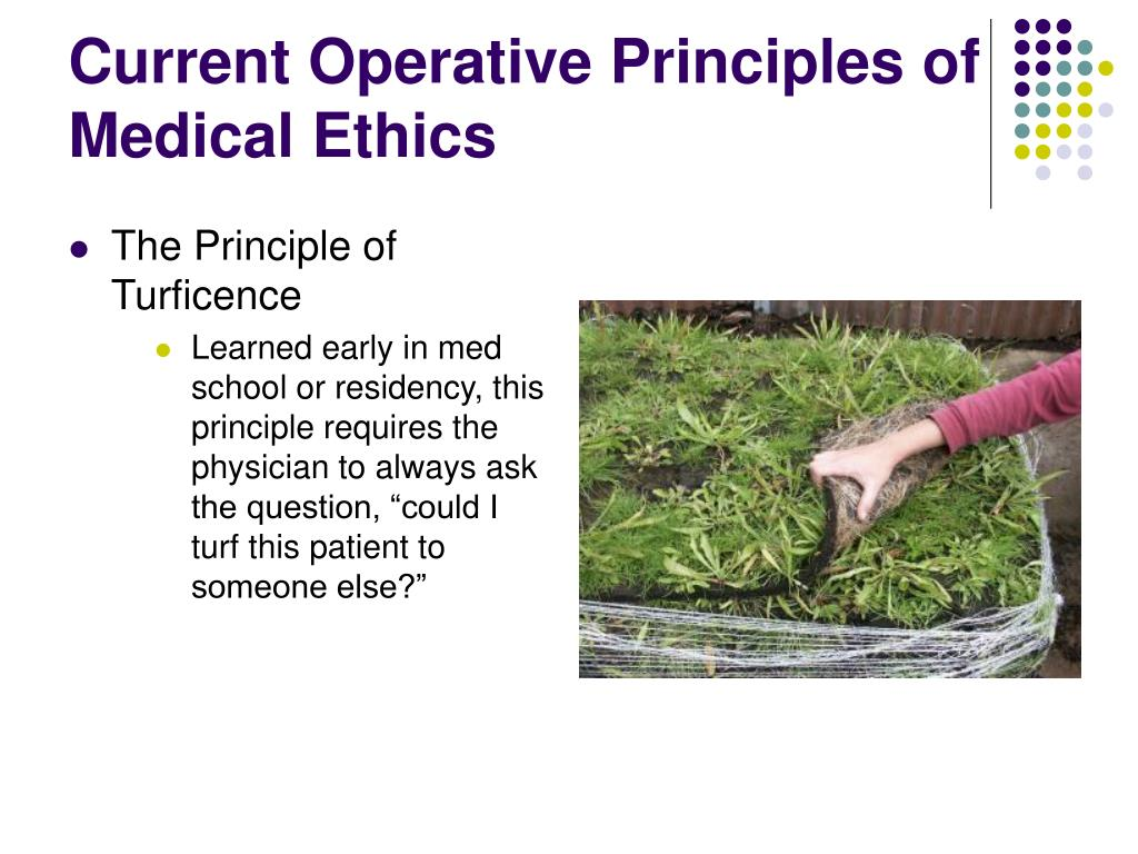 Current Operative Principles of Medical Ethics