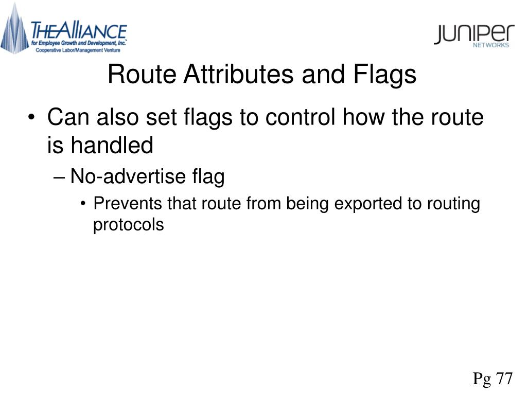 Route Attributes and Flags