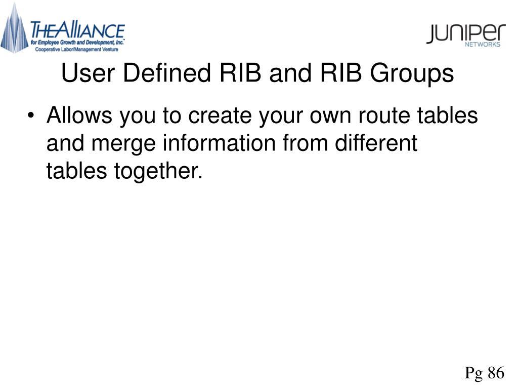 User Defined RIB and RIB Groups