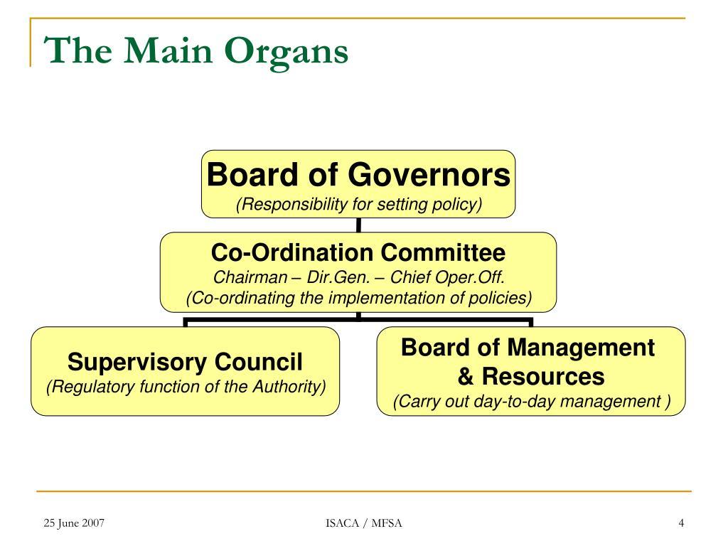 The Main Organs