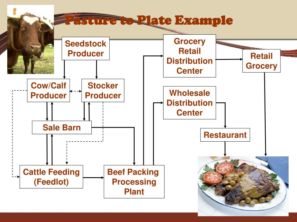Pasture to Plate Example