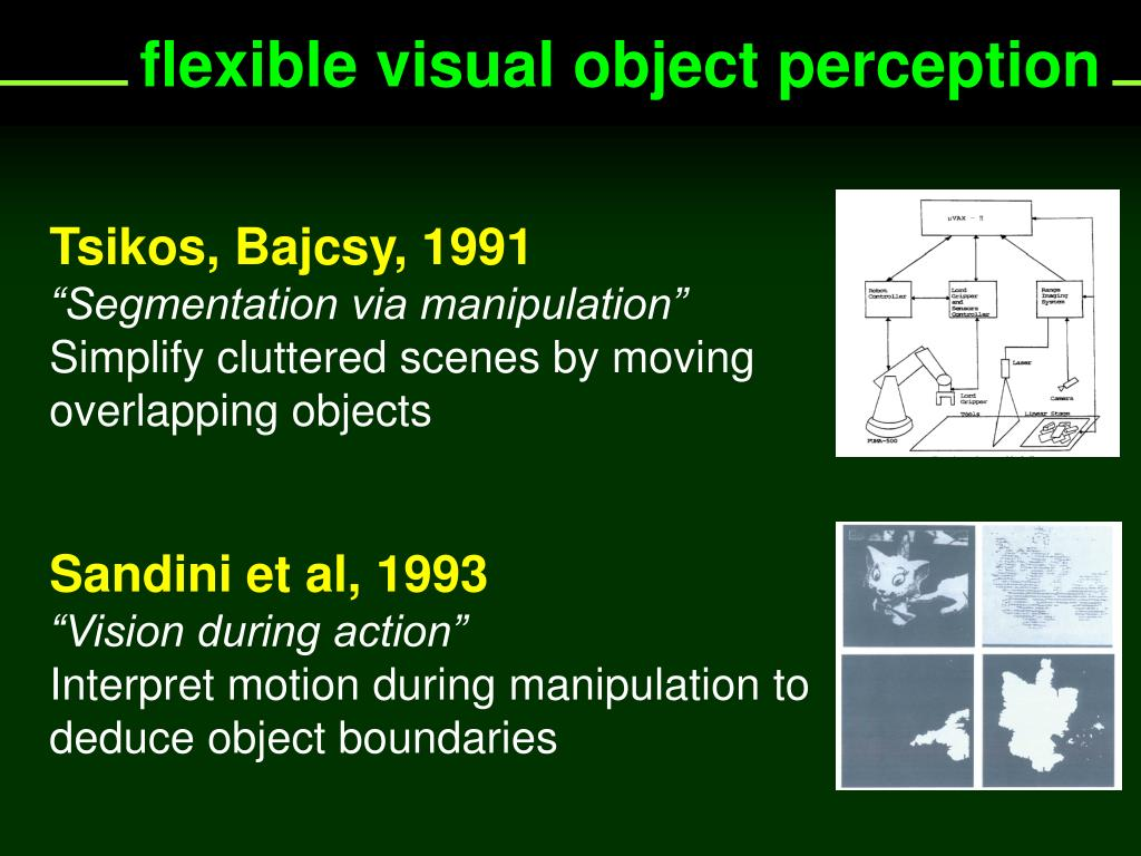 flexible visual object perception