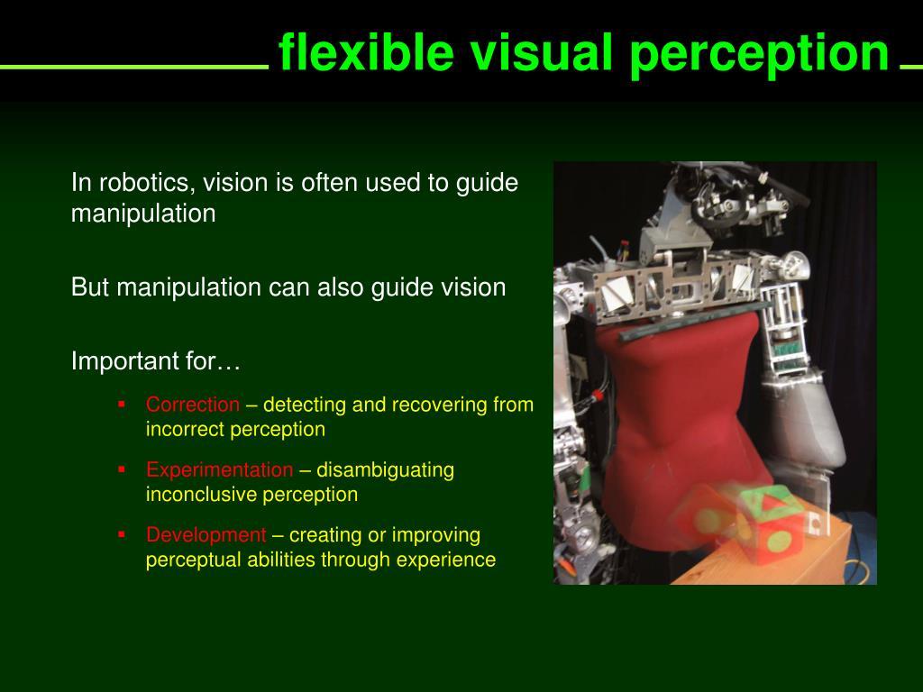 flexible visual perception