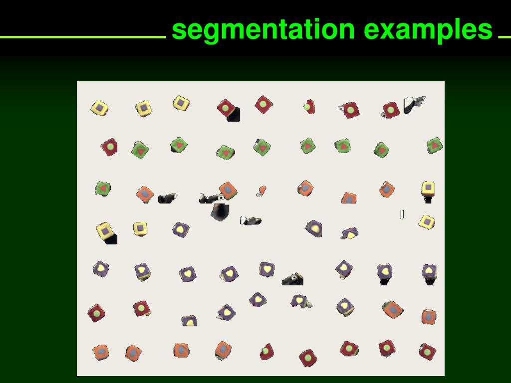 segmentation examples