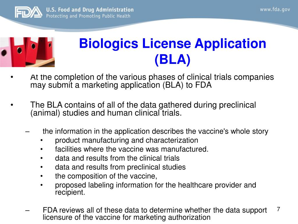 Biologics License Application (BLA)