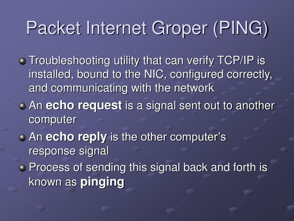 Packet Internet Groper (PING)