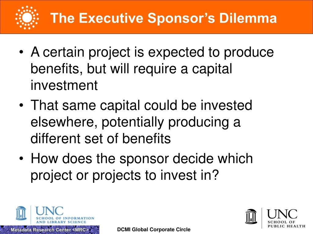 The Executive Sponsor's Dilemma
