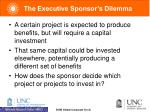 the executive sponsor s dilemma