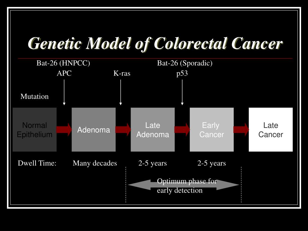 Genetic Model of Colorectal Cancer