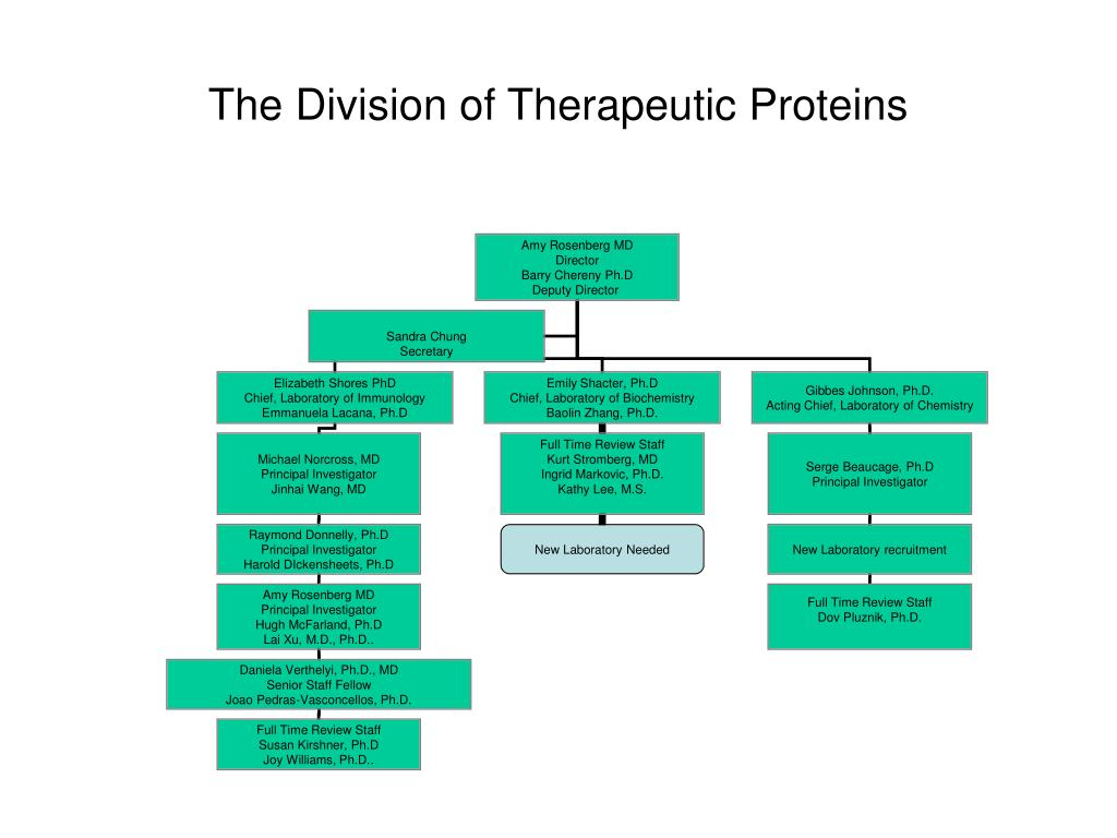 The Division of Therapeutic Proteins