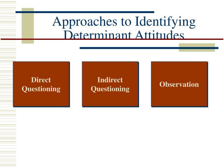 Approaches to Identifying Determinant Attitudes