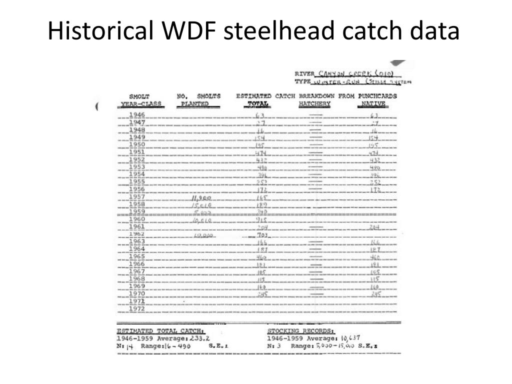 Historical WDF steelhead catch data