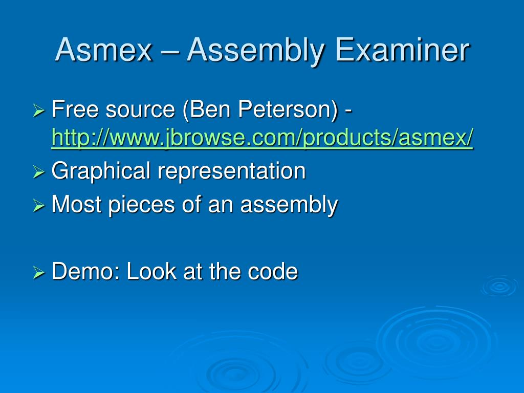 Asmex – Assembly Examiner