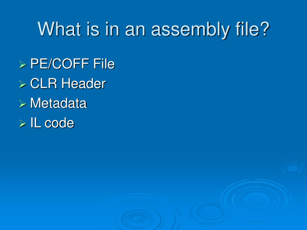 What is in an assembly file?