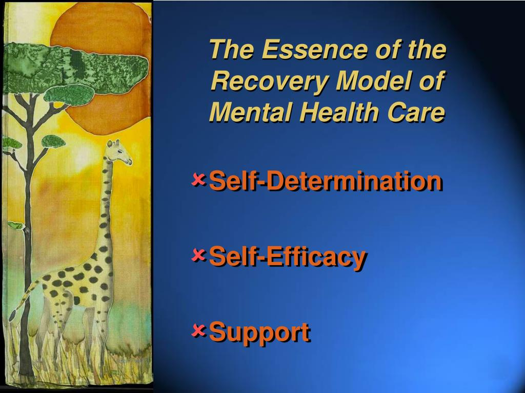 The Essence of the Recovery Model of Mental Health Care