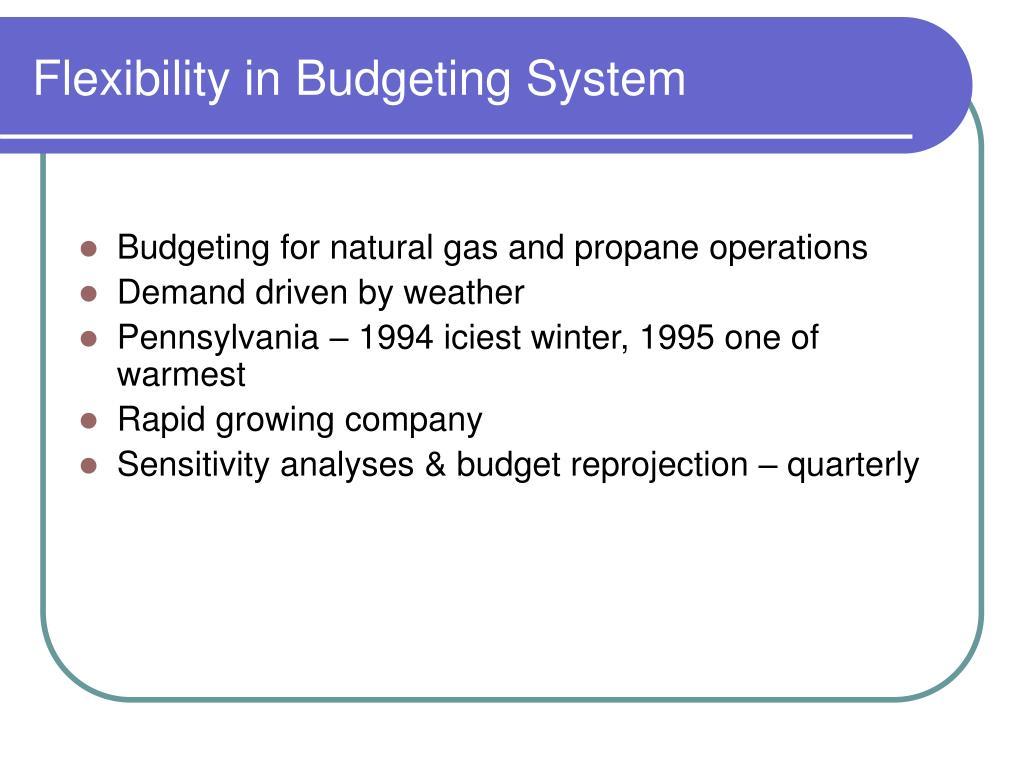 Flexibility in Budgeting System