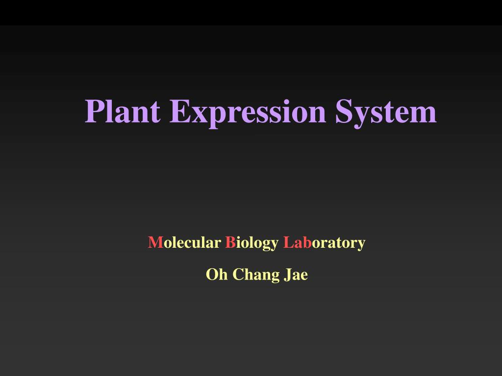 Plant Expression System