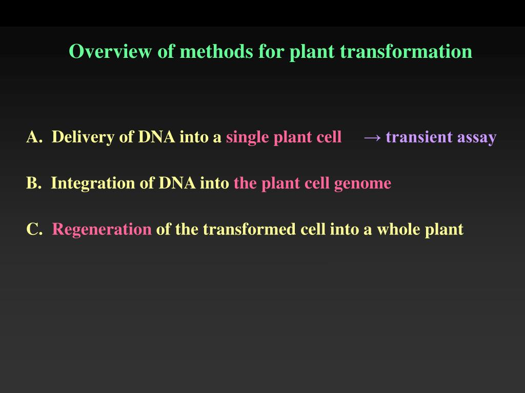Overview of methods for plant transformation