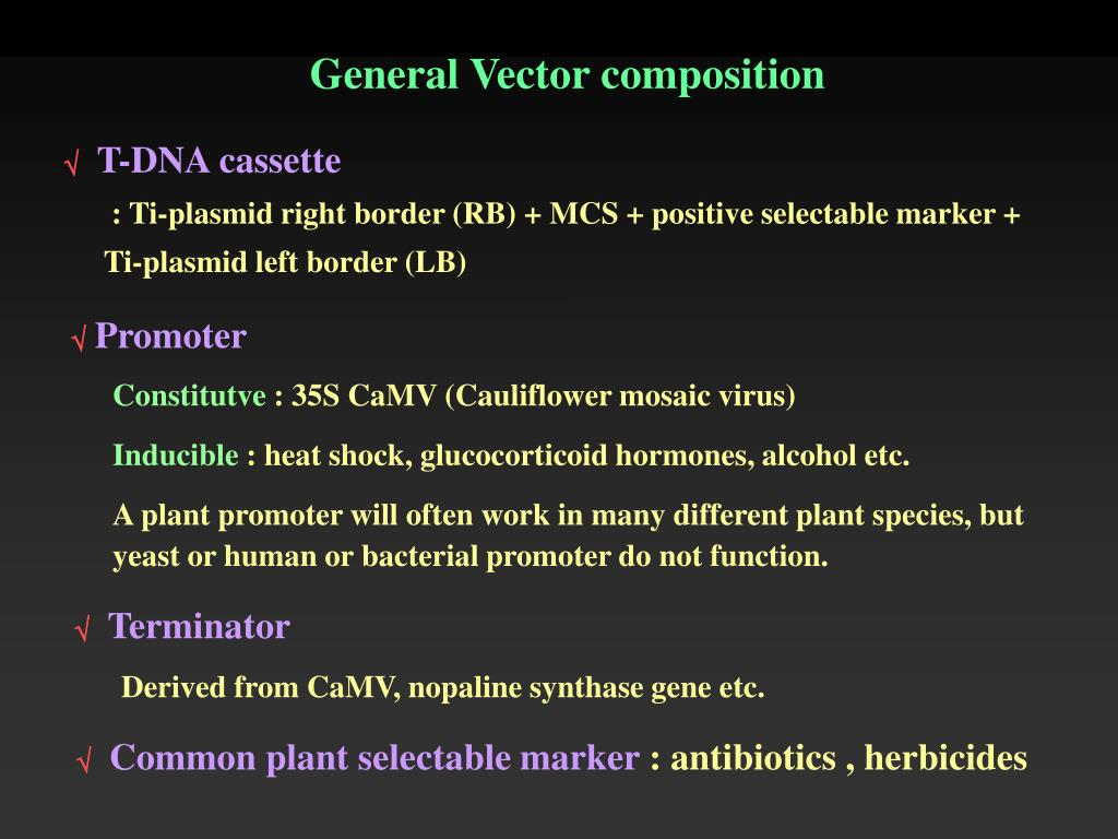 General Vector composition